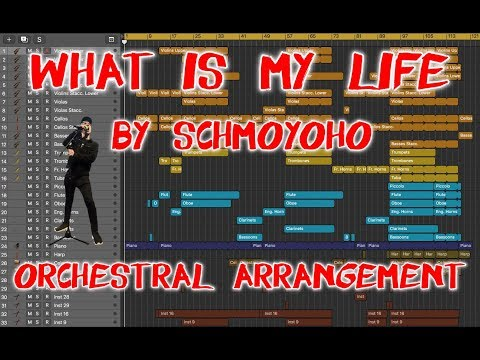 What Is My Life (Schmoyoho) | Orchestral Arrangement #14