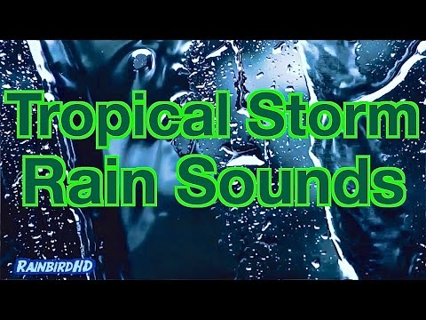 """""""Heavy Rain Sounds"""" 10 Hours of Pouring Rain and Thunder during a Tropical Storm HD"""