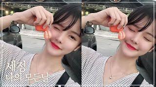 Gambar cover 🍑 세정(Se-Jeong) - 나의 모든 날 (All of my days) [사랑의 불시착 OST] COVER by 율이