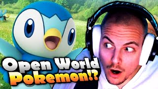 OPEN WORLD POKÉMON & DIAMANT & PERL REMAKE!?