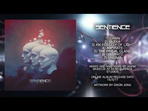 Sentience - The Pineal Gland