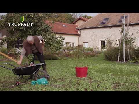 calendrier du jardinier de novembre jardinerie truffaut tv youtube. Black Bedroom Furniture Sets. Home Design Ideas
