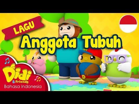 Lagu Anak-Anak Indonesia | Didi & Friends | Anggota Tubuh