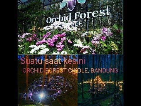 suatu-saat-ke-sini-[orchid-forest-cikole]