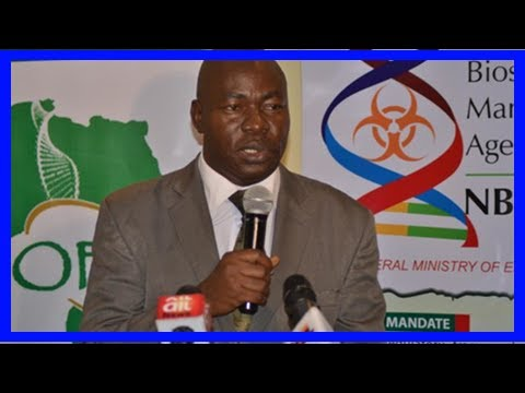 Breaking News | Ships laden with gmo maize intercepted in lagos