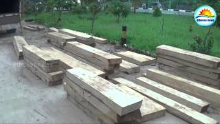 Illegal Wood business caught in Kathankudi