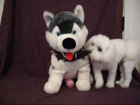 Sam The Anatomically Correct Dog Strangest Item On Ebay