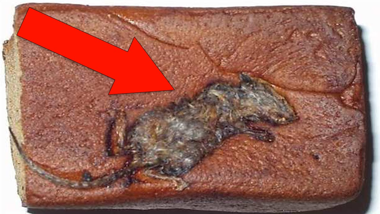 the most disturbing things found in food youtube