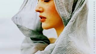 Silent Journey صلح Iranian Music