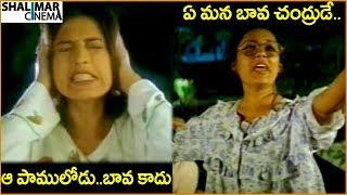 Mahesh Babu, Sonali Bendre || Latest Telugu Mov...