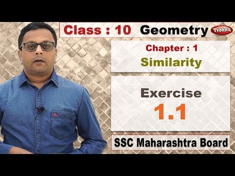 Class 10 | Maths | Geometry | Chapter 1 | Similarity | Exercise 1.1