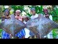 GIANT STINGRAY Fish Cooking | Monster SeaFood Stingray Fish Cutting and Cooking | Thirukkai Kulambu