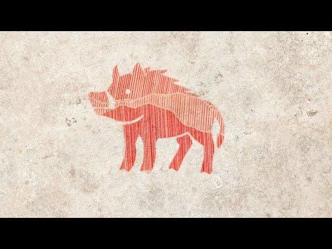 Хорош ли год Свиньи для рождённых в год Свиньи