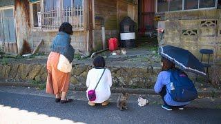 宮城県石巻市 Ishinomaki city,Miyagi 田代島 Tashirojima http://japan...