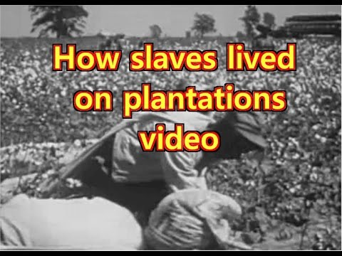 Plantation life for slaves in the South
