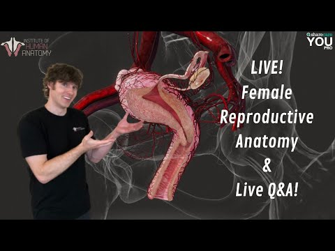 Female Reproductive Anatomy & Live Q&A!