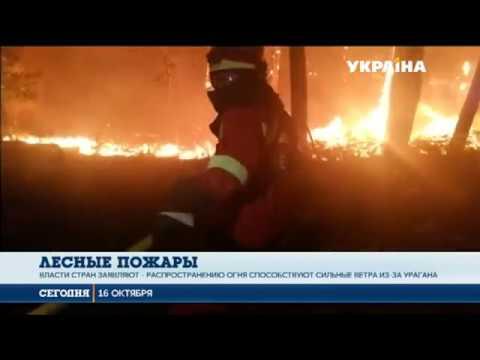 Сегодня: Испанию и Португалию охватили масштабные лесные пожары