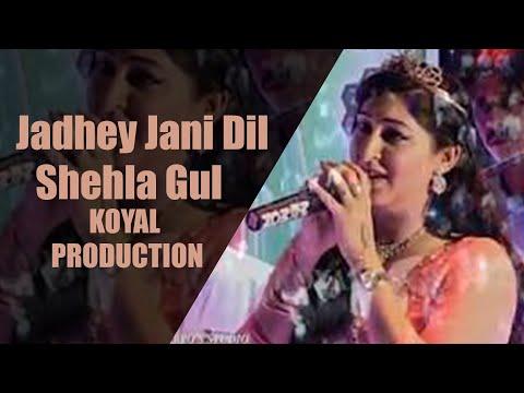 Jadhey Jani Dil || New Sindhi Song || Singer Shehla Gul || KOYAL PRODUCTION