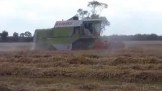 lincolnshire harvest