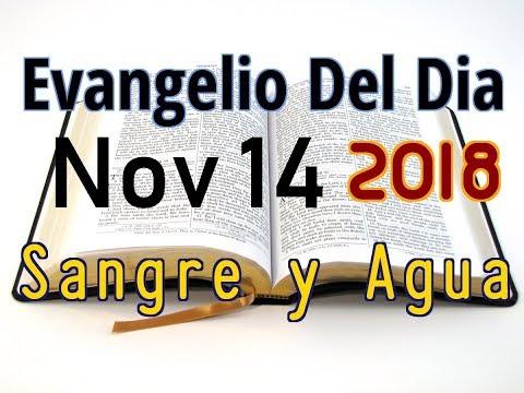 Evangelio del Dia- Miercoles 14 Noviembre 2018- El Leproso Agradecido- Sangre y Agua