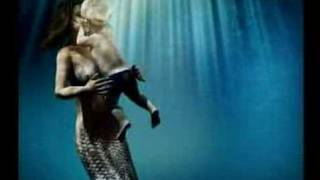 Marea - Petenera (en carne viva)