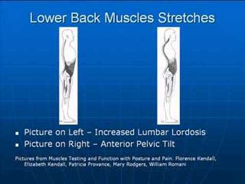 Posture Exercises - Lower Back Stretches - YouTube