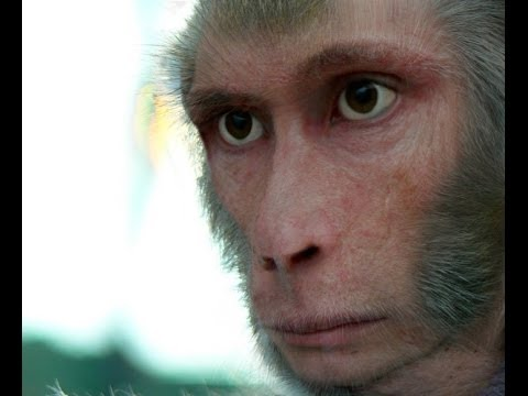 India's Most Elusive Monster: The Monkey Man Documentary