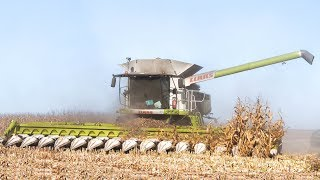 🇫🇷 XXL CORN Harvest / Moisson Maïs in FRANCE ! 16 ROWS & Lexion 770