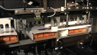 Wrap Around Cartoner and Knock Down Case Packer System