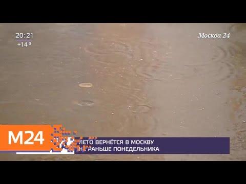 Синоптики рассказали о погоде в Москве - Москва 24