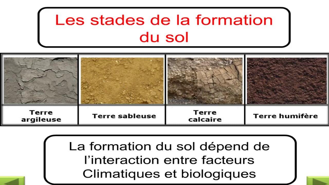 Les étapes de la formation du sol : La pédogénèse