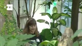 """Joven conocida como """"la niña de la selva"""" presenta su documental"""