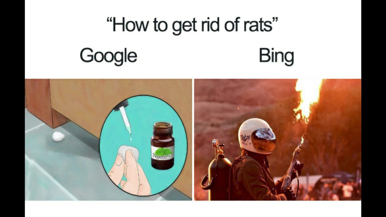 20 Google Vs Bing Memes That Are As Hilarious As They Are
