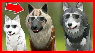 СИМУЛЯТОР ВОЛКА #12 ВСТРЕТИЛИ ЛОСЯ ИГРЫ Жизни Зверей WildCraft про котят лис собак ДЕТСКИЕ ИГР