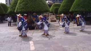 La danza de los viejitos, con la orquesta Flor de Dalia de Jaracuaro, Michoacán.