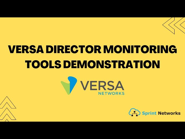 Versa Director Monitoring Tools