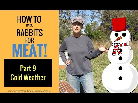 Raising Rabbits for Meat Part 9:  Cold Weather