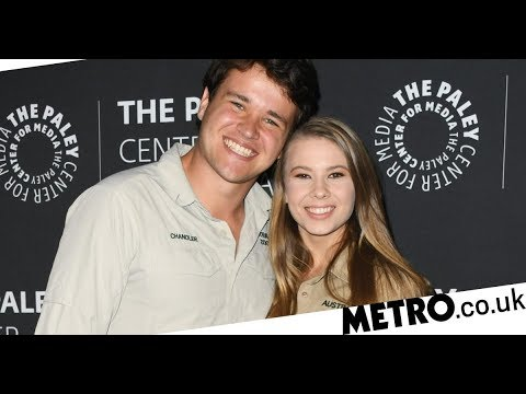 Bindi Irwin announces her pregnancy, five months after her wedding ...