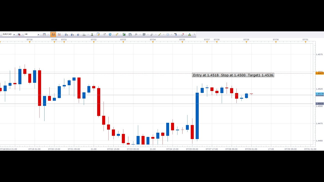 Forex online training