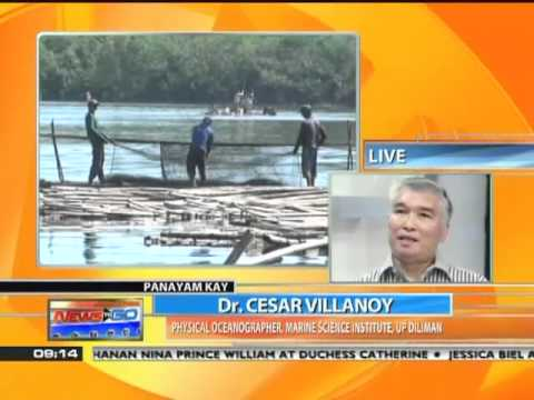 News to Go - Marine experts say fish kills caused by human activity 6/8/11