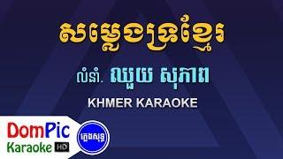 សម្លេងទ្រខ្មែរ ឈួយ សុភាព ភ្លេងសុទ្ធ - Somleng Tro Khmer Chhouy Sopheap - DomPic Karaoke