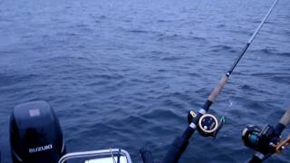 Dalsland Fishing - Tom Farstad drillar grann lax på Vänern