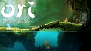 Ori and the Blind Forest (Gameplay) | What to Play