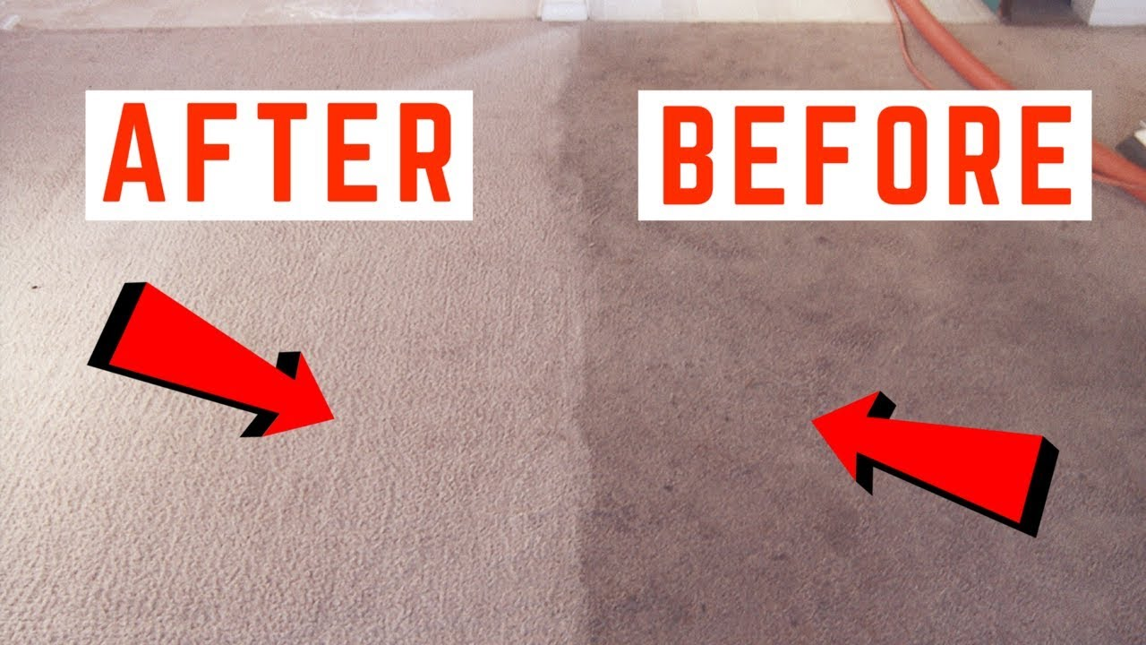 Professional carpet cleaning vs doing it yourself true finders image result for hd carpet cleaning solutioingenieria Choice Image