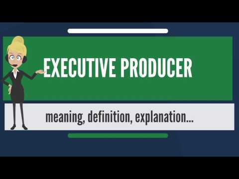 What is EXECUTIVE PRODUCER? What does EXECUTIVE PRODUCER mean? EXECUTIVE PRODUCER meaning