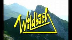 Wildbach Themesong ( Stan Bush - Free and Easy )