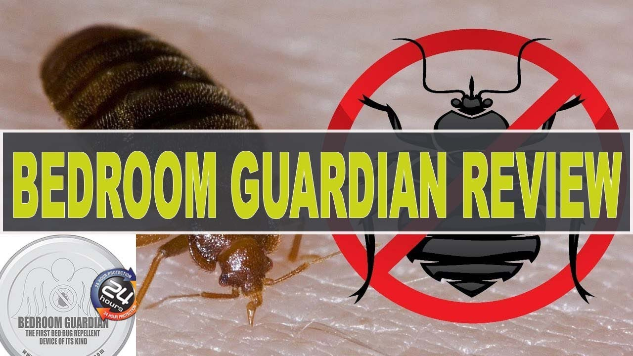 Bedroom Guardian Bed Bugs Reviews