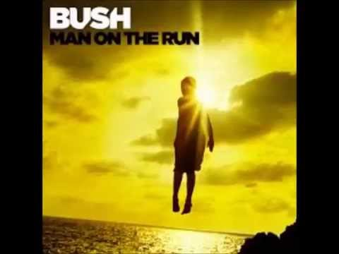 Bush - Surrender W/Lyrics (Man On The Run - New Album)