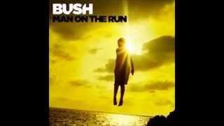 Bush - Surrender W/Lyrics (Man On The Run - New Album)
