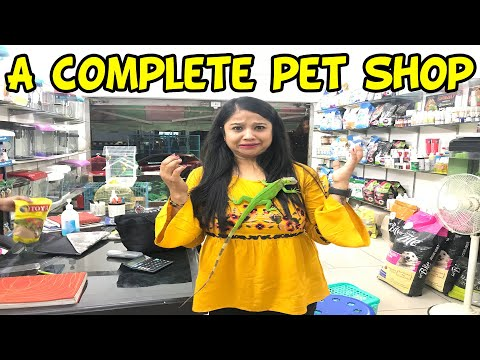 CHEAPEST DOGS AND PET SHOPS  || Deepti Vlog